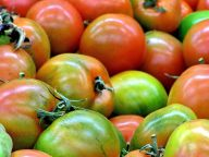 PromisingStrategies-tomatoes.jpg