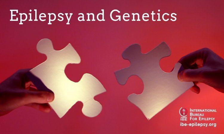 Epilepsy and Genetics - ibe-epilepsy