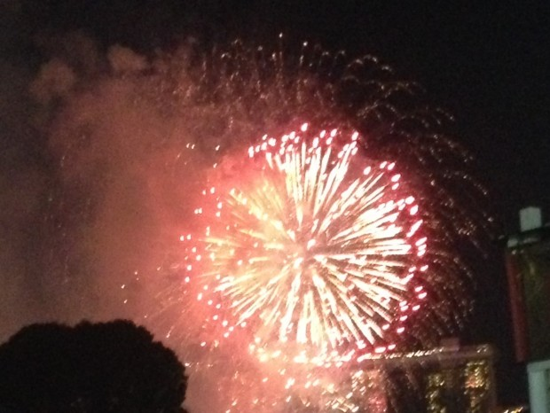 Fireworks to celebrate Singapore National Day on 9th August, which occurred during the 10th Asian & Epilepsy Congress.